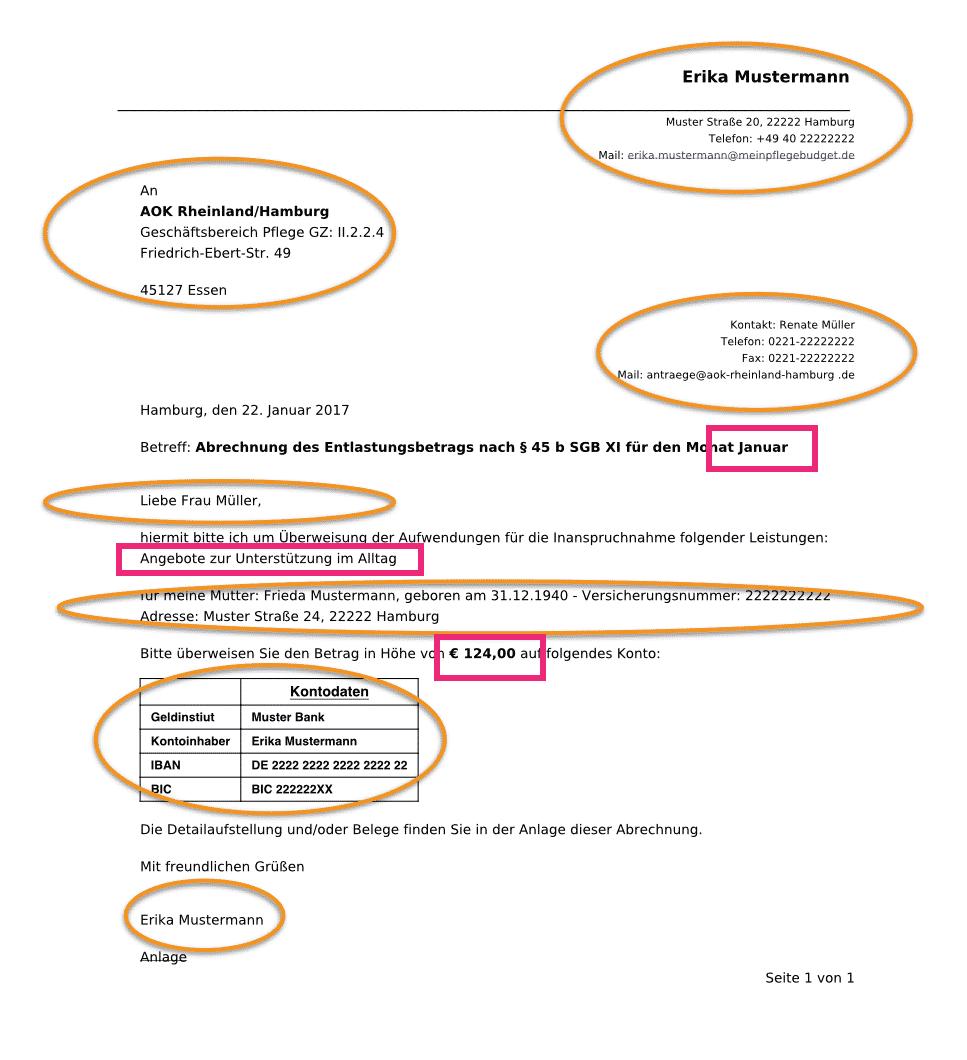 erstantrag fr pflegeleistungen von erika mustermann - Beratungsgesprach Pflege Beispiel